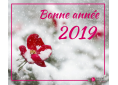 Bonne année NN.png