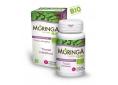 Moringa_bio_transit_natural_nutrition.jpg